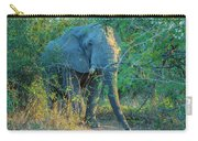Zimbabwe Bull Elephant Carry-all Pouch