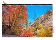 Zion Autumn Colors Carry-all Pouch