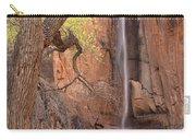 Zion Canyon Carry-all Pouch