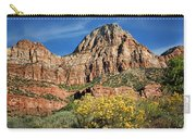 Zion Canyon - Navajo Sandstone Carry-all Pouch