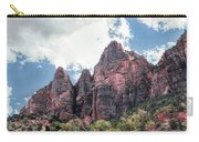 Zion Canyon Terrain Carry-all Pouch