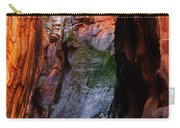 Zion Narrows With Boulder Carry-all Pouch