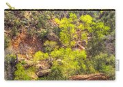 Zion National Park Small Tributary Of The Virgin River Carry-all Pouch