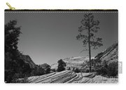 Zion Park Geology Texture Carry-all Pouch