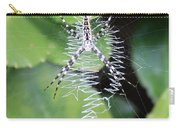 Zipper Spider Carry-all Pouch