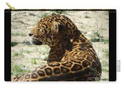 Zoo 2015 006 Carry-all Pouch