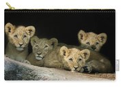 Four Cubs Carry-all Pouch