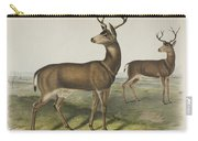 Columbian Black Tailed Deer Carry-all Pouch
