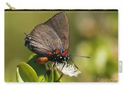 Great Purple Hairstreak Carry-all Pouch
