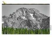 Mountain Rising Carry-all Pouch