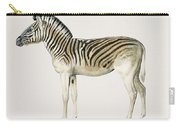 Mountain Zebra  Dauw  Illustrated By Charles Dessalines D' Orbigny  1806-1876  Carry-all Pouch
