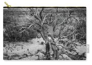 Pinyon Pine Carry-all Pouch