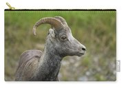 Stone's Sheep Carry-all Pouch