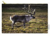 Svalbard Reindeer Carry-all Pouch