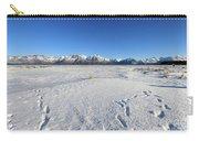 Turnagain Arm And Chugach Range From Hope Alaska Carry-all Pouch