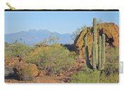 View To Four Peaks  Carry-all Pouch