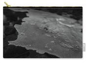 Ice Layer On The Seafloor Carry-all Pouch