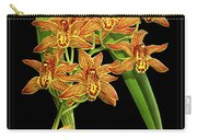 Vintage Orchid Print On Black Paperboard Carry-all Pouch