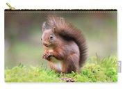 Red Squirrel Sciurus Vulgaris Carry-all Pouch