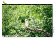Beautiful Barn Owl Carry-all Pouch by Rob D Imagery