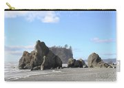 Ruby Beach Sunshine Carry-all Pouch