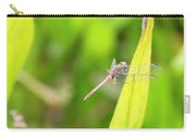Small Beautiful Dragonfly Carry-all Pouch