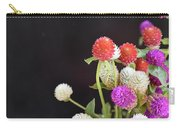 7191-multicolor Carry-all Pouch