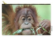 A Close Portrait Of A Young Orangutan Eating Leaves Carry-all Pouch