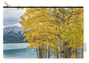 Abraham Lake Carry-all Pouch