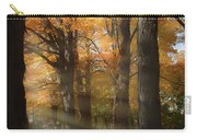 Afternoon Light In Fall Colors Of New England Carry-all Pouch