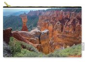 Agua Canyon - Bryce Canyon - Utah Carry-all Pouch
