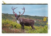 Alaska Caribou In Denali National Park Carry-all Pouch