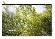 Alpine Sunlight In The Rockies Carry-all Pouch