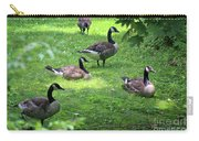 An Afternoon With Canada Geese Carry-all Pouch