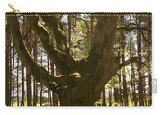 ancient tree in forest near Greenlawin Scottish Borders Carry-all Pouch