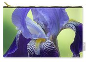 Angie's Iris Carry-all Pouch