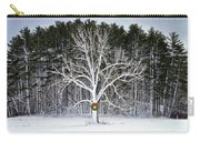 Appleton Tree In Holiday Dress Carry-all Pouch