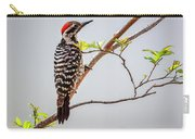 Arizona Ladderback Woodpecker Carry-all Pouch