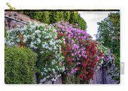 Aurelian Wall Carry-all Pouch