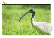 Australian White Ibis Carry-all Pouch by Rob D Imagery