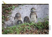 Baby Burrowing Owls Posing Carry-all Pouch