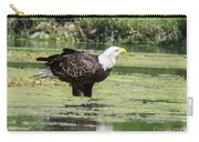 Bald Eagle's Look Carry-all Pouch
