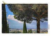 Barberini View Carry-all Pouch