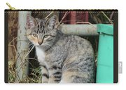Barn Cat Carry-all Pouch by Ann E Robson