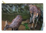Beautiful Horns Carry-all Pouch