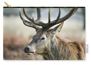 Beautiful Red Deer Stag Cervus Elaphus With Majestic Antelrs In  Carry-all Pouch