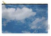 Big Sky, Little Bird Carry-all Pouch