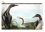 Black Throated Diver, Colymbus Arcticus By Audubon Carry-all Pouch