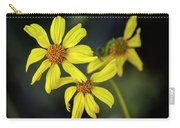Brittlebush H1853 Carry-all Pouch by Mark Myhaver