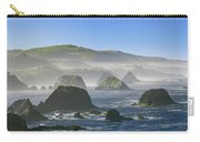 California Ocean Carry-all Pouch